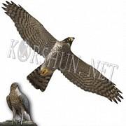 Отпугиватель птиц профиль птицы Хищник-1 Минск