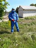 Обработка участка гербицидами Могилев