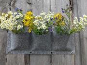 Стенка для растений (вертикальная грядка) Брест
