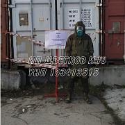 Дезинсекция/фумигация/газация (уничтожение вредителей) в контейнере! Минск