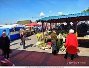 Продам действующий городской рынок в городе Горки, Беларусь Горки