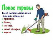 Покос травы и бурьяна, спил кустарников и мелких деревьев Минск